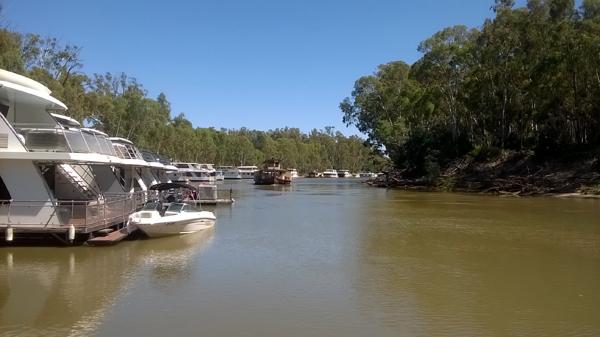 murrayriverboats.jpg